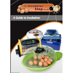 Guide to Incubation