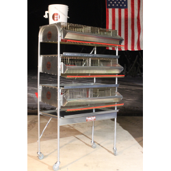 "36""H.D Triple Rack Quail   Pen ("